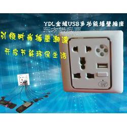 YDL金域牌带LED灯带USB充电的墙壁插座面板厂家图片