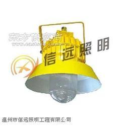 海洋王 节能强光防爆电筒 JW7210图片