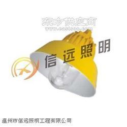 海洋王型号-NFC9175长寿顶灯图片