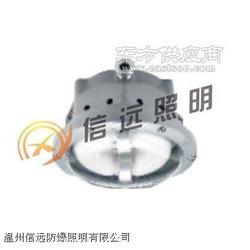 便携式强光防爆应急工作灯IW5100图片