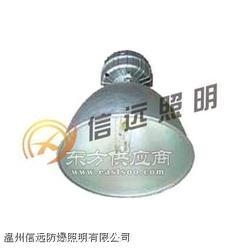 IW5100便携式强光防爆应急工作灯图片
