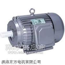 滨海东方电机供应Y90S-4型三相异步电动机图片