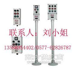 10A电流指示灯和按钮操作箱子 指示灯防爆操作柱图片