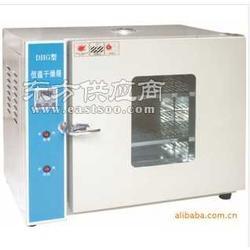 101-1A恒温干燥箱图片
