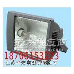 SBF6220防水防尘防腐泛光灯图片