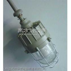 HSD610A隧道燈圖片