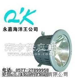 海洋王NFC9110/NW1 (高效顶灯)图片