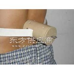供应灸疗导入器艾灸腰椎病图片