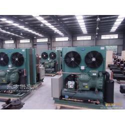 冷库制冷设备比泽尔风冷机组一佳冷库制冷设备有限公司图片