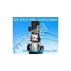 CDLF32-40-2热水管道离心泵图片