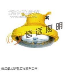 XY-NFC9850高效場館頂燈圖片