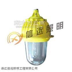 XY-JIW5210便携式多功能强光灯图片