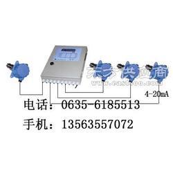 行业领先HD-800沼气泄露报警器图片