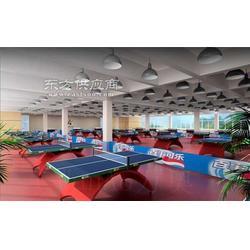 乒乓球塑胶地板乒乓球pvc运动地板图片