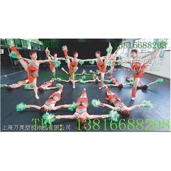 舞蹈戏剧院专用塑胶地板图片