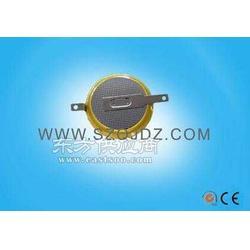 专业锂电纽扣可充电池LIR2450 电池工厂图片
