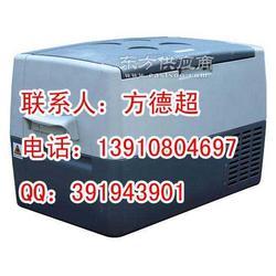 温湿度车载冷藏运输冰箱图片