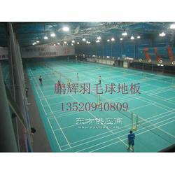 体育场塑胶地板羽毛球馆地板运动场馆专用地板图片