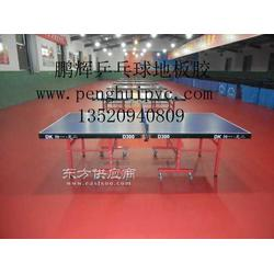乒乓球地胶室内乒乓球地板胶比赛场地地胶图片