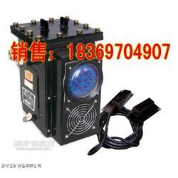 GWD100矿用数字型温度传感器图片