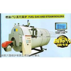 WNS6吨燃气蒸汽锅炉报价参数图片