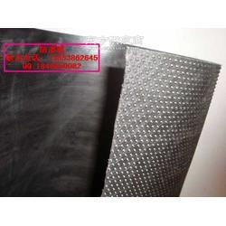 复合土工膜土工膜HDPE土工膜图片