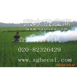 城市消毒机 灭蚊机 杀虫机 烟雾机 迷雾机图片