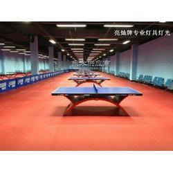 专门专业专用乒乓球场馆照明灯具图片
