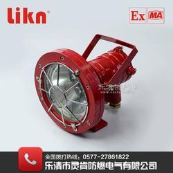 DGS30/127LA矿用led图片