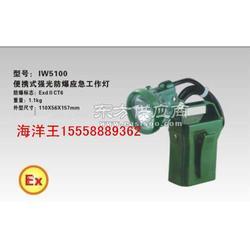 海洋王IW5100海洋王IW5100廠家圖片