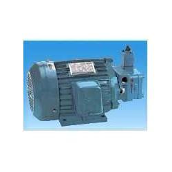 SMVP-30-2-1A油泵电机图片
