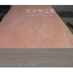 贝壳杉橱柜板 桉木胶合板图片