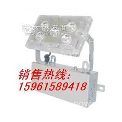 现货GAD605-J固态应急照明灯图片