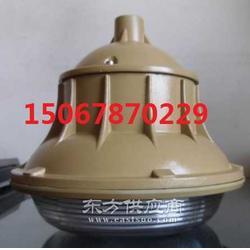 SBF6103-YQL50B防水防尘工厂灯图片
