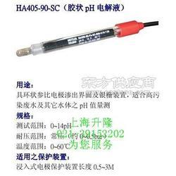 HA405-90-SC ph计图片