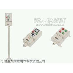 防爆强光电筒(IIC)图片