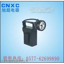 IW5120ˉ¨便携式免维护强光防爆工作灯ˉ¨IW5100GF图片