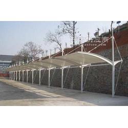 柏森膜结构车棚景观篷张拉膜设计图片