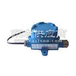 氢气泄露报警器RBK-6000-2图片