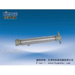 DGS-20矿用荧光灯图片