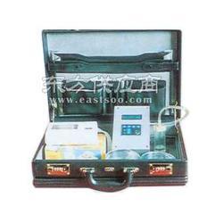 生产供应DMF钻孔瓦斯流量仪图片