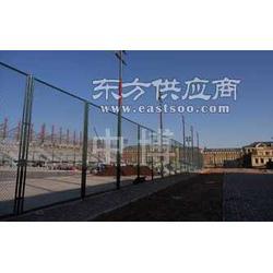 网球场围栏网图片