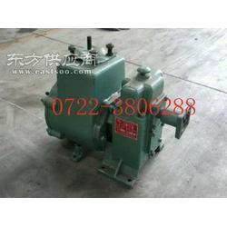 CLW80QZF-60/90N大功率自吸式洒水泵采购图片