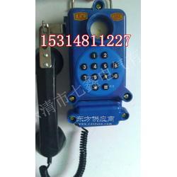 HBZ矿用本安型按键电话机 HBZ防爆电话机图片