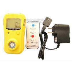 氧气检测仪TYSD-O2型图片