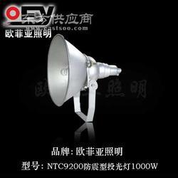 防震型投光灯1图片