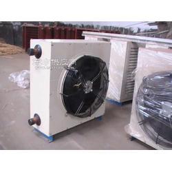 瀚泓企业供应优质水暖散热器 园艺暖风机图片