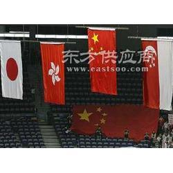 体育场馆智能升旗控制系统图片