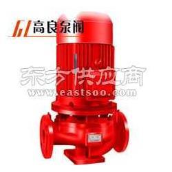 XBD3.6/20-100消防泵图片