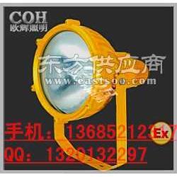 防爆投光燈 250W防爆投光燈圖片
